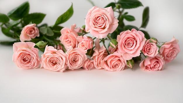 Blumenstrauß der blassrosa rosen auf hellem hintergrund