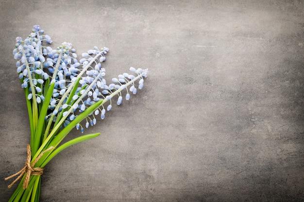 Blumenstrauß der blauen muscari auf rustikalem grauem hintergrund.