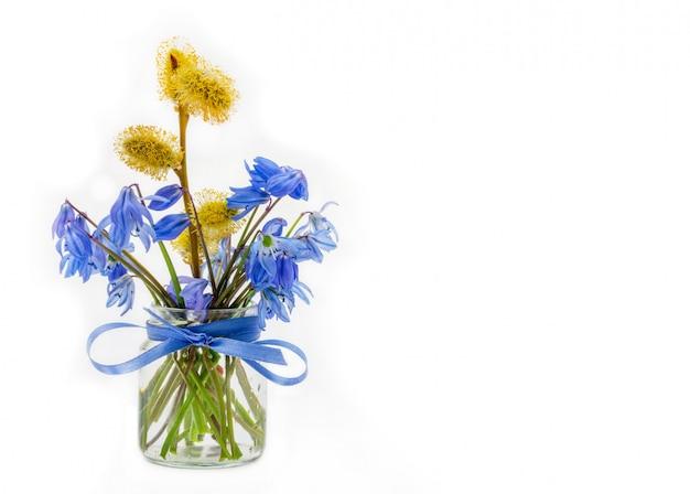 Blumenstrauß der glockenblume und des zweigs der blühenden weide in einem glasgefäß mit einem bogen des blauen bandes auf einem weißen hintergrund mit einem kopienraum