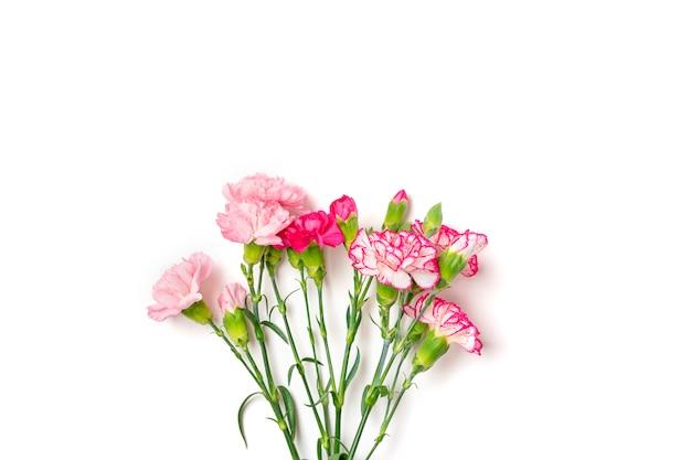 Blumenstrauß der rosa nelkenblume lokalisiert auf weißem hintergrund draufsicht flache lage