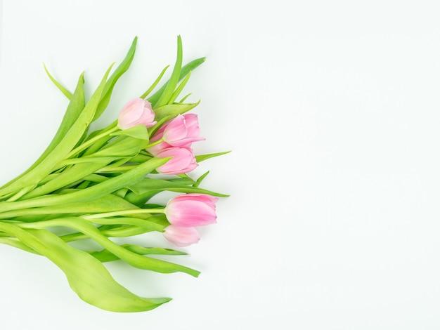 Blumenstrauß der rosa tulpen auf einem weißen hintergrund. frühlingskonzept.