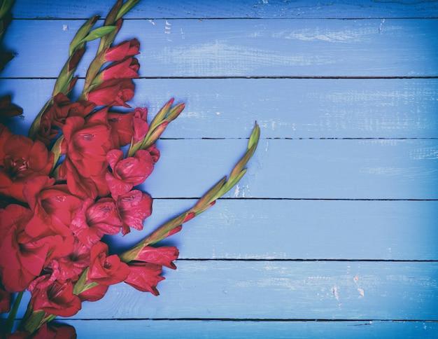 Blumenstrauß der roten gladiole auf einem blauen hölzernen hintergrund