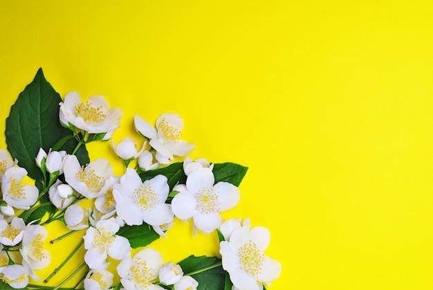 Blumenstrauß des blühenden jasmins mit weißen blumen