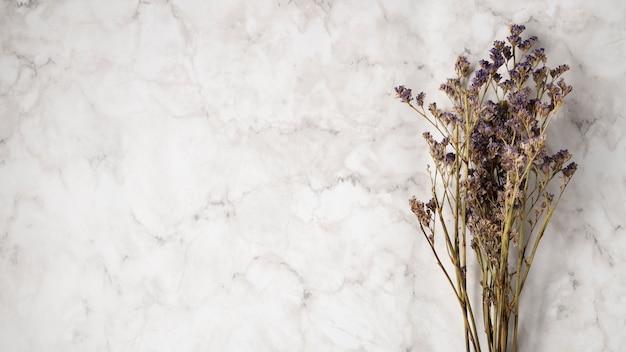 Blumenstrauß des lavendels mit kopienraum