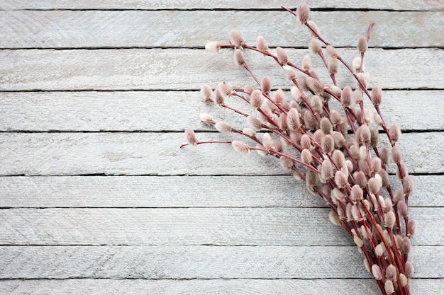 Blumenstrauß einer blühenden weide auf einem hellen hölzernen hintergrund