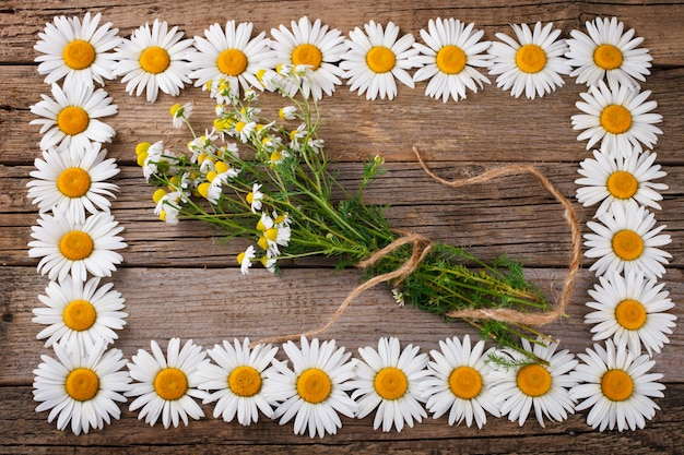 Blumenstrauß von camomiles auf dem gealterten hölzernen hintergrund