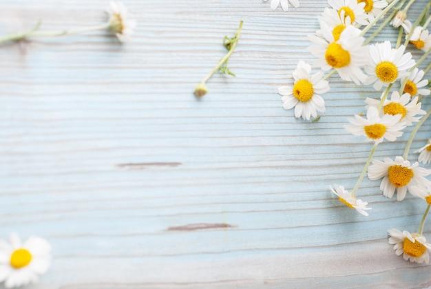 Blumenstrauß von frisch ausgewählten kamillenblumen auf hölzernem hintergrund
