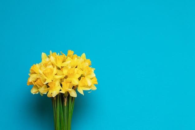 Blumenstrauß von frischen gelben narzissen auf einem blauen hintergrund mit raum für text