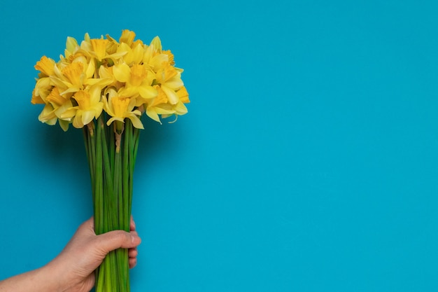 Blumenstrauß von frischen gelben narzissen in den weiblichen händen auf einem blauen hintergrund mit raum für text