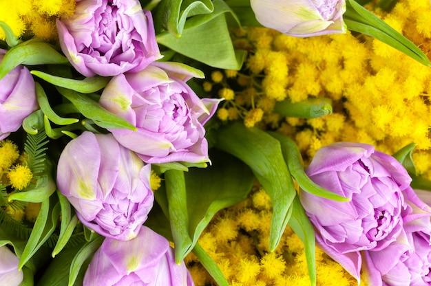 Blumenstrauß von lila tulpen und gelben mimosen, makro, seitenansicht, nahaufnahme.