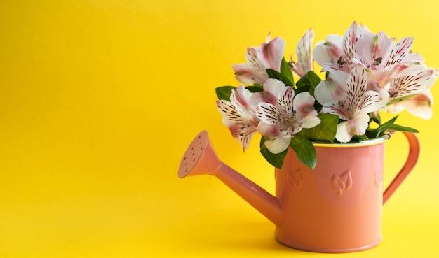 Blumenstrauß von rosa astromeria in einer gießkanne