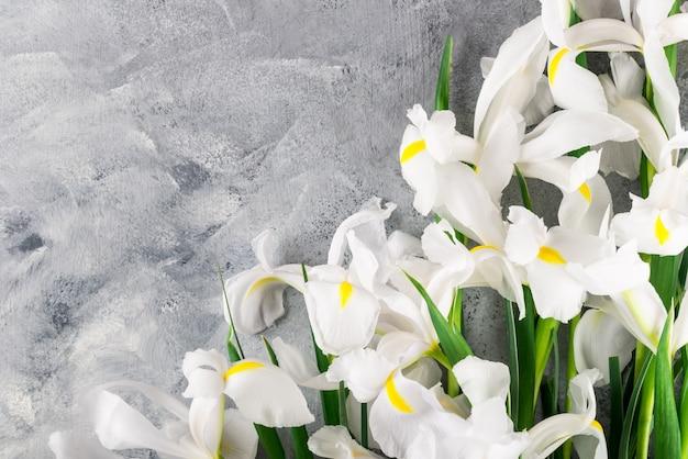 Blumenstrauß von schönen iris flowers