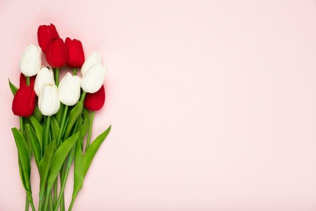 Blumenstrauß von weißen und roten tulpen mit kopieraum