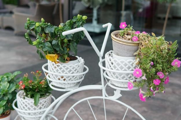 Blumentöpfe auf einem alten verzierten fahrrad
