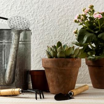 Blumentöpfe und werkzeuge mit niedrigem winkel