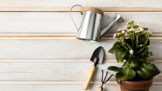 Blumentopf und gießkanne