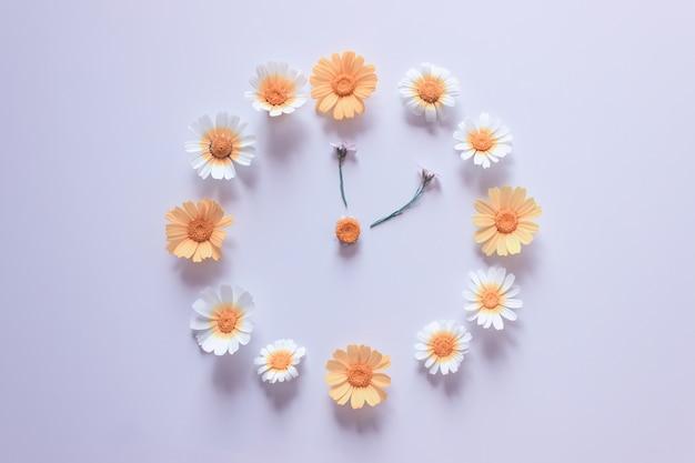 Blumenuhr aus weißen und gelben gänseblümchen auf grau
