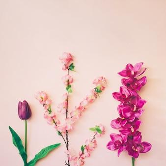 Blumenzusammensetzung auf rosa hintergrund