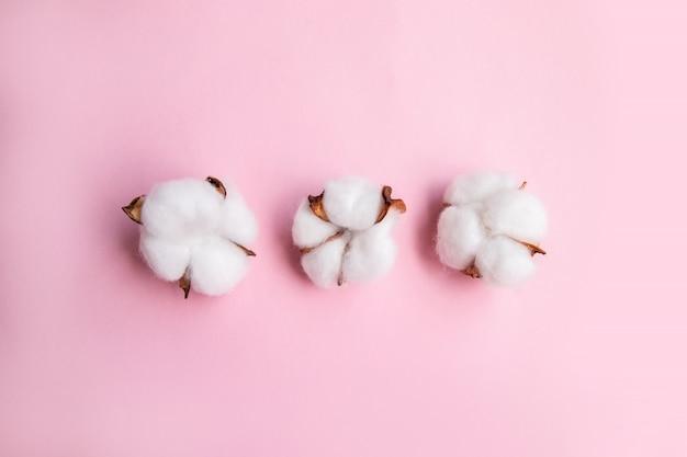 Blumenzusammensetzung auf rosa schreibtisch mit baumwolle. flache lage, draufsicht, kopienraum.