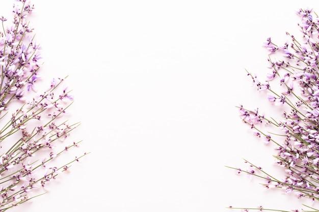 Blumenzusammensetzung mit blumen isoliert