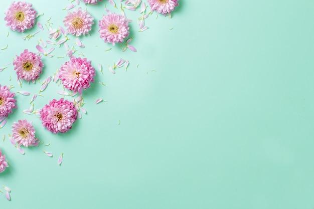 Blumenzusammensetzung mit blumen und blütenblättern auf einem pastellhintergrund