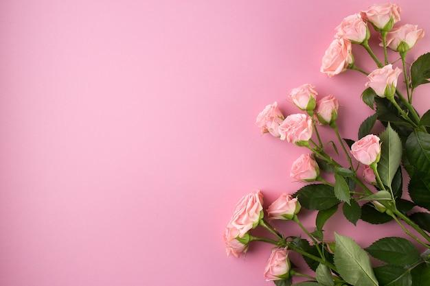 Blumenzusammensetzung, rosarosenblüten auf pastellrosa,