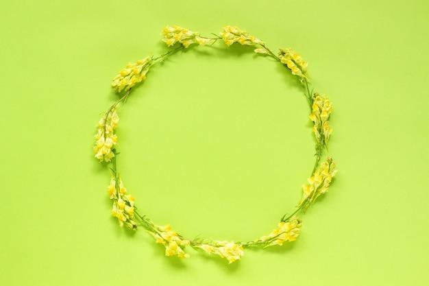 Blumenzusammensetzung. runden blumenkranz des feldes von gelben blumen auf grün