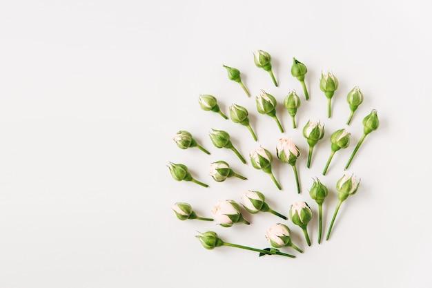 Blumenzusammensetzungkleine rosen mit knospen und grünen blätternflacher draufsichtkopierraum