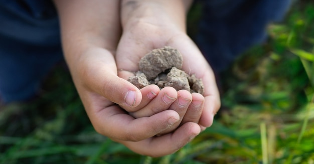 Boden in der hand, palme, kultivierter schmutz, erde, boden, ökologischer gartenbau, landwirtschaft. natur nahaufnahme. umweltstruktur, muster. schlamm auf dem feld.