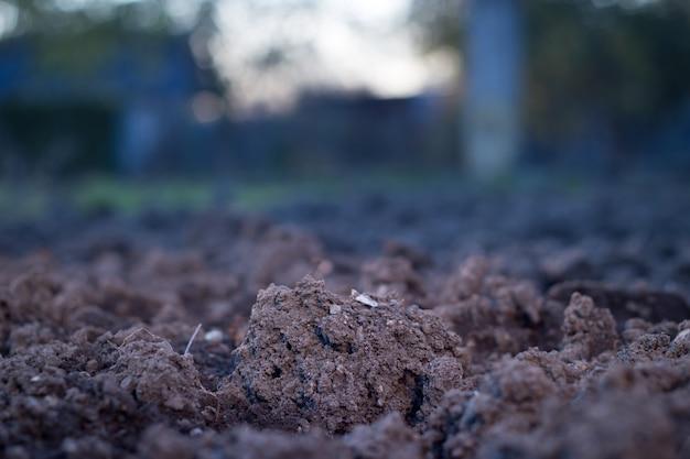 Boden ist ein natürlicher ton mineralien sind natürlich viele arten zum pflanzen geeignet, der boden ist fruchtbar pflanzen wachsen gut