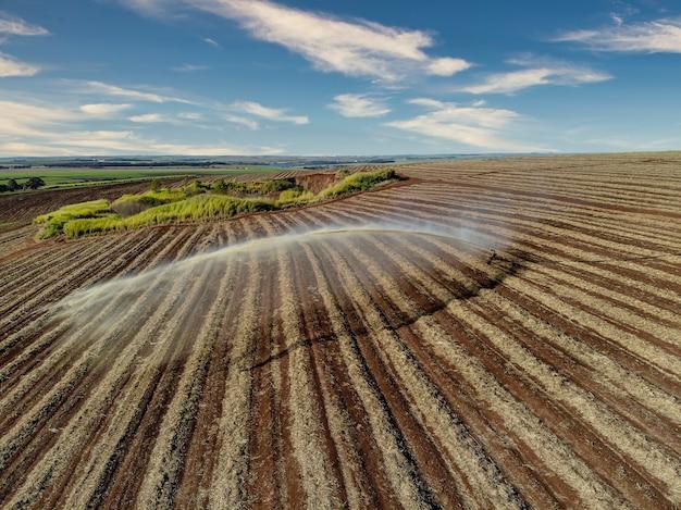 Bodenbehandlung in zuckerrohrplantagen.