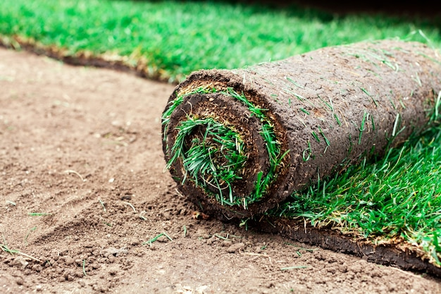 Bodenbeschichtung mit grünen rasenrollen