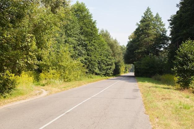 Bogen der bäume auf einer verlassenen asphaltstraße