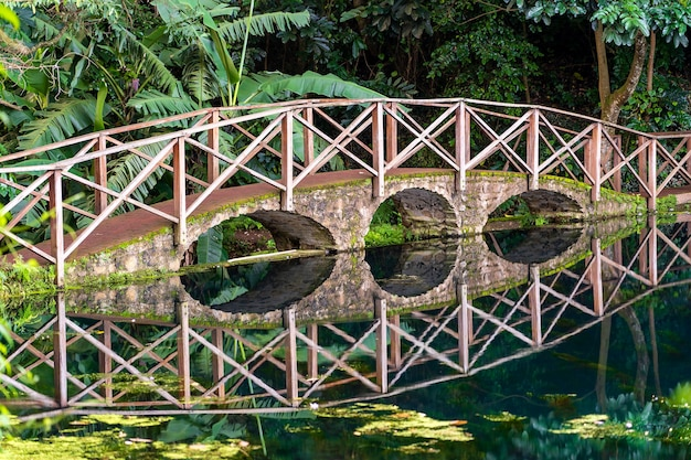 Bogenbrücke auf einem see mit reflexion, tansania, ostafrika. steg über einen teich