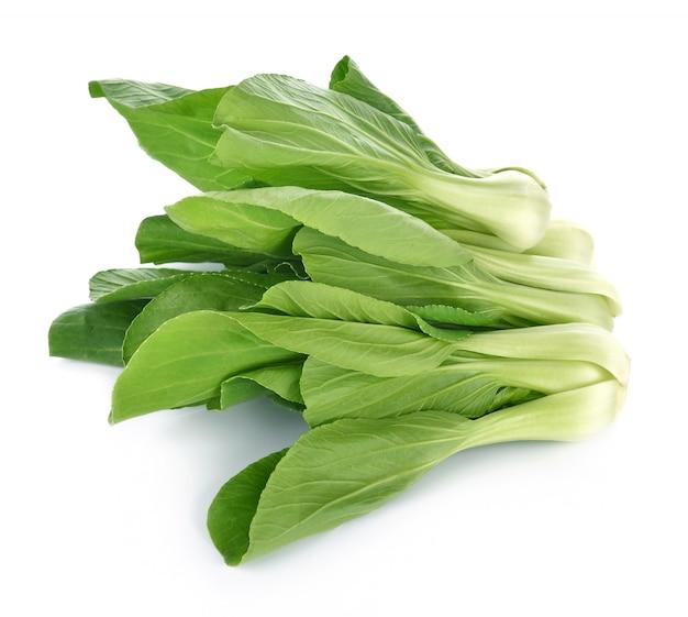 Bok choy gemüse auf weißem hintergrund