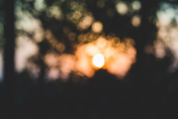 Bokeh blured lichter. realistischer sechseckiger abstrakter blendeneffekt, baumschatten