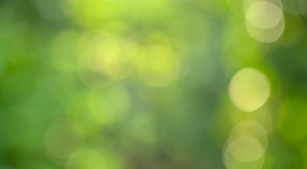 Bokeh verschwimmen grün