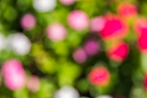 Bokeh viele farbenfrohe gärten