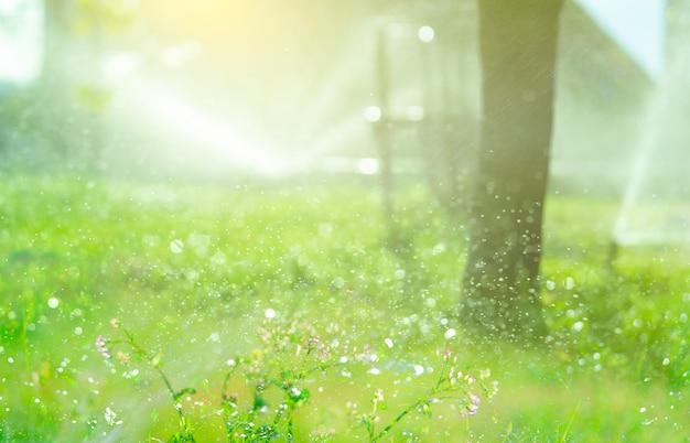 Bokeh-wasser, das auf unscharfem hintergrund des automatischen rasensprinklers spritzt, der grünes gras bewässert sprinkler