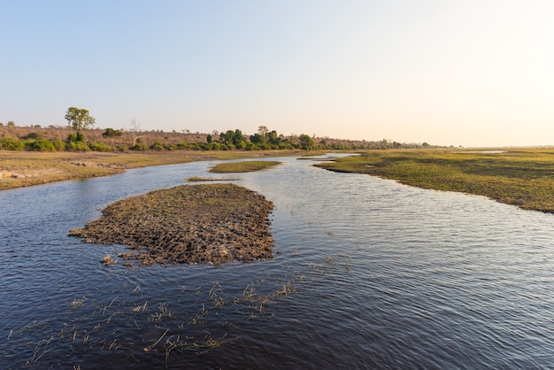 Bootsfahrt und wildtiersafari auf dem chobe river in botswana