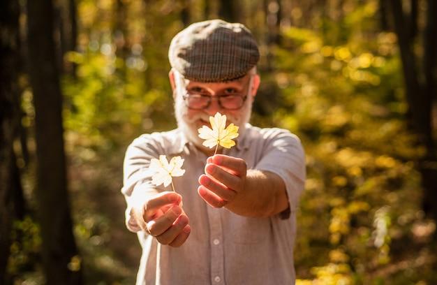 Botaniker untersuchen kräuter. bärtiger großvater im wald. mann genießt die herbstnatur. neugier auf botanik. entdecken sie die welt. rentner, der an einem sonnigen herbsttag im wald wandert. alter mann sammelt blätter.