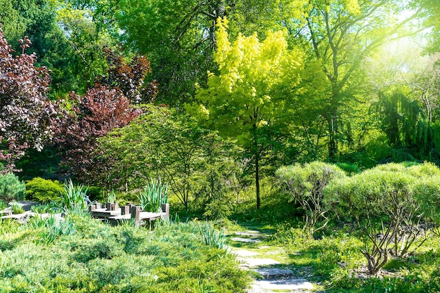 Botanische landschaftsgestaltung gartenpark büsche bäume blumen fregh gras rasen gartenarbeit natur