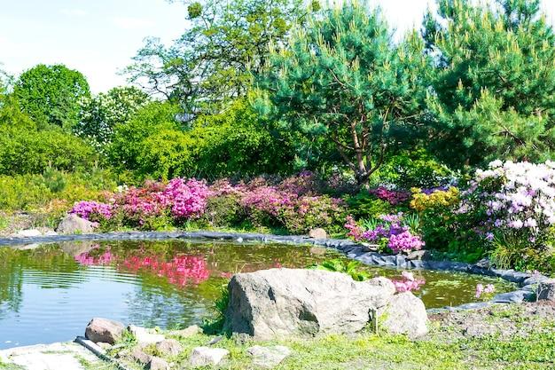 Botanische landschaftsgestaltung im dekorativen teichpool des gartens mit blumengras-rasengartennatur