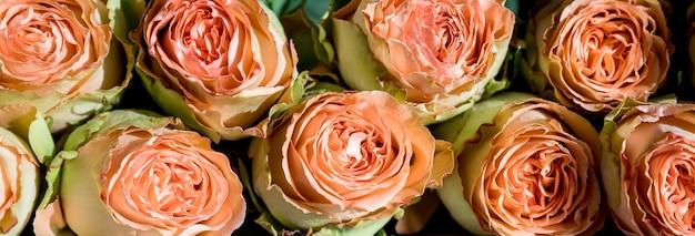 Bouquet von pfingstrosen von julia. zartes bouquet von orangefarbenen rosen. geschenk für valentinstag, geburt