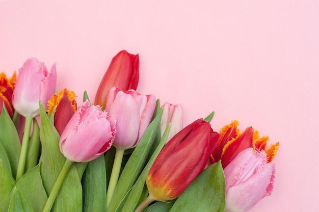 Bouquet von rosa und roten tulpen auf einem rosa