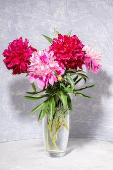 Bouquet von schönen frischen sanften hellrosa und hellen magentafarbenen pfingstrosen in glasvase auf hellgrau mit schatten. blühende zeit. valentinstag, muttertag, frauenmonat, frauentag, hochzeit.