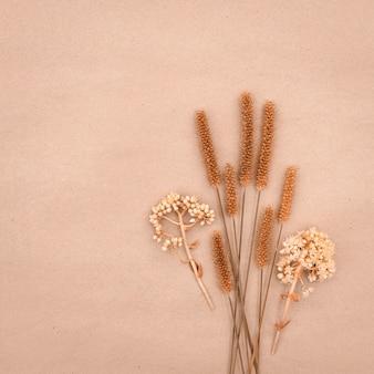 Bouquet von trockenen feldpflanzen auf pastellfarbenem hintergrund mit kopierraum