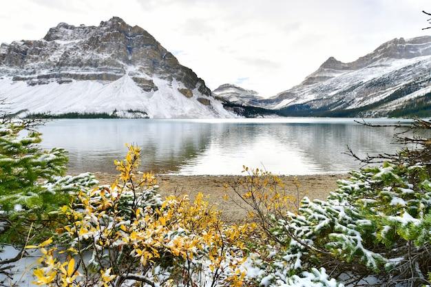 Bow lake, rocky mountains, banff, alberta, kanada