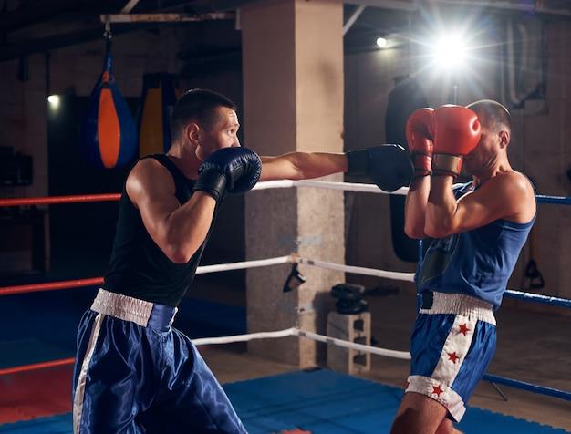 Boxer, die das kickboxing im ring am fitnessstudio ausbilden