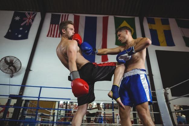 Boxer kämpfen im boxring